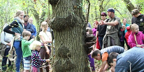 Wonderful Woodlands: Tree Discovery in the Stoke Park Estate tickets