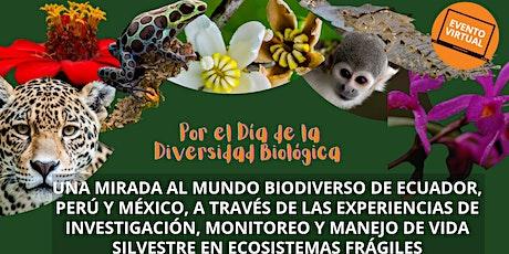Una mirada al mundo biodiverso de Ecuador, Perú y México boletos
