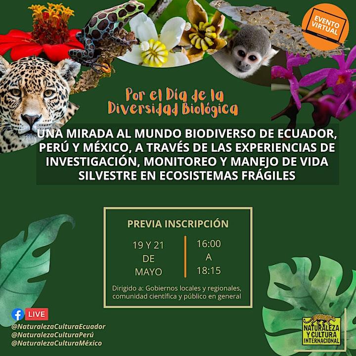 Imagen de Una mirada al mundo biodiverso de Ecuador, Perú y México