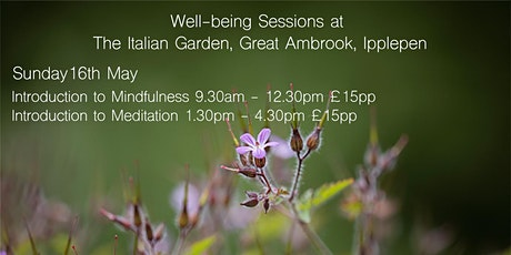 Introduction to Mindfulness with Vicki Gardner tickets