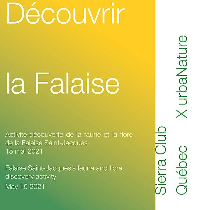 Découvrir la Falaise / Discover the Falaise image