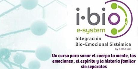 Curso - Integración Bio-Emocional Sistémica I Bio-E System. (Pre-registro) entradas
