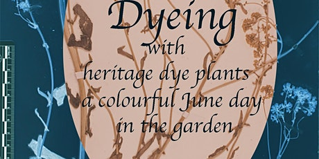 Natural Dyeing in the SLBI Garden tickets