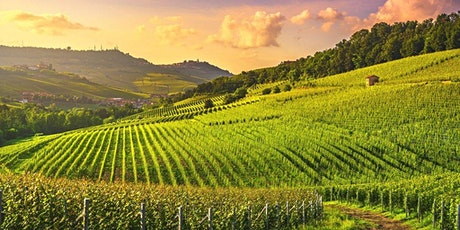 """Taste of Piedmont"" Wine Tasting tickets"