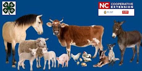 4-H Clover Class Series - Livestock 101 tickets