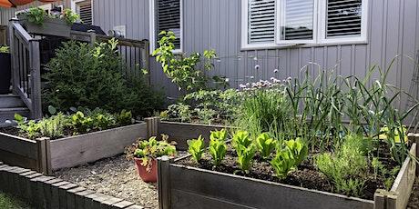 Start Your Own Edible Garden (XEDG 201) tickets