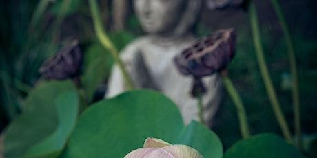 Chakra Series: Mindfulness Movement tickets