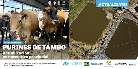 Webinar: Purines de Tambo, actualización en normativa provincial. entradas