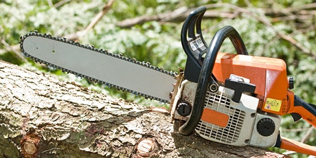 Chainsaw Safety & Tree Felling for Beginners tickets