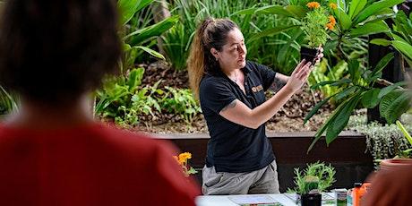 Bee Garden Making Workshop for Kids tickets