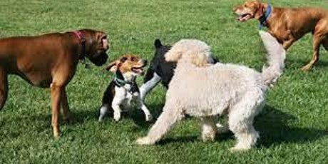 Tails & ALES Dogpark Fundraiser tickets