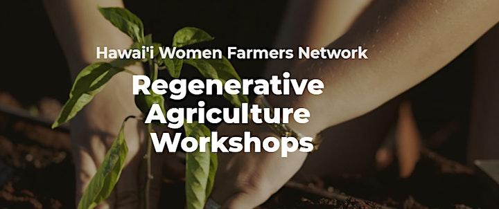 [In-person event] Soil Health Summer Workshop Series- Workshop 3 image