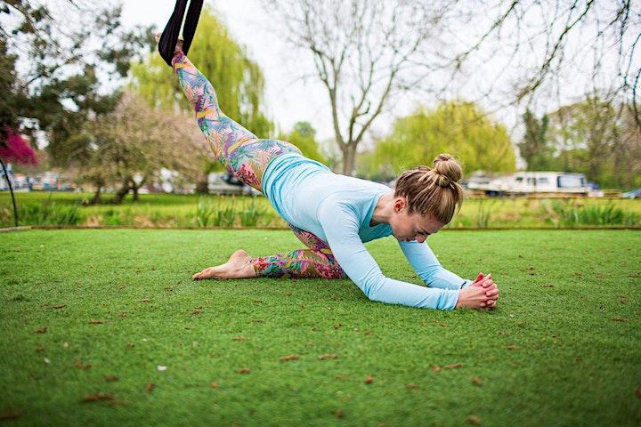 Riverside Aerial Yoga Workshop image