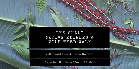 The Gully Native Edibles & Wild Weed Walk with David King and Diego Bonetto tickets