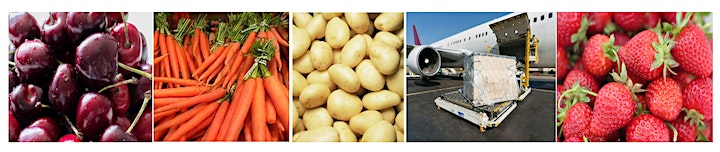 Trade Insights for Tasmanian vegetable growers image