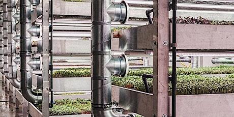 Rondleiding: De meest indrukwekkende verticale stadsboerderij van Brussel tickets