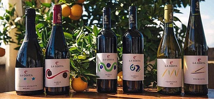 Organic Winery Visit: Wine Label Painting, Wine Tasting and Lunch image