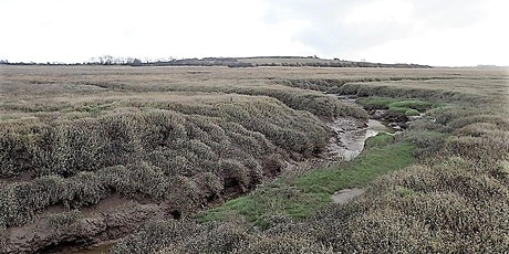 Barnaby's Sands and Burrows Marsh Invertebrate Recording Day tickets