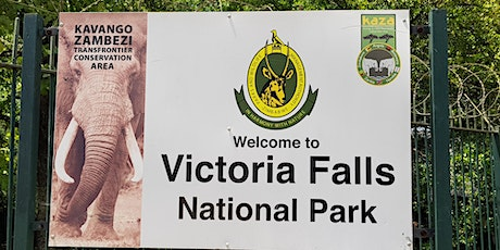 Real time live tour to Victoria Falls tickets