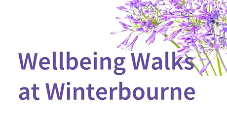 Wellbeing Walks with Pause@UoB tickets