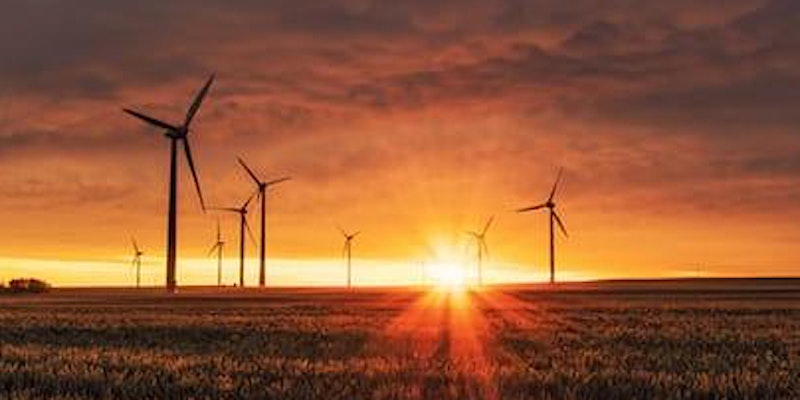 Webinar: Climate, Environment, Sustainability: key issues for the UK tech sector