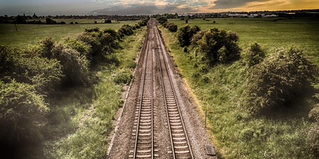 Space and Place in Hardy and Dickens: The Vegetal and the Railway tickets