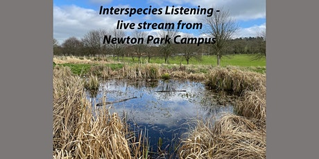 Interspecies Listening - live stream from Newton Park Campus tickets
