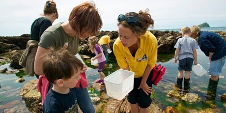 Rockpool Safari tickets