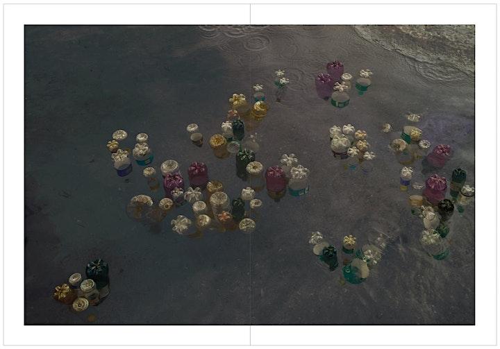 Afbeelding van THIRZA SCHAAP - PLASTIC OCEAN - BOOK SIGNING