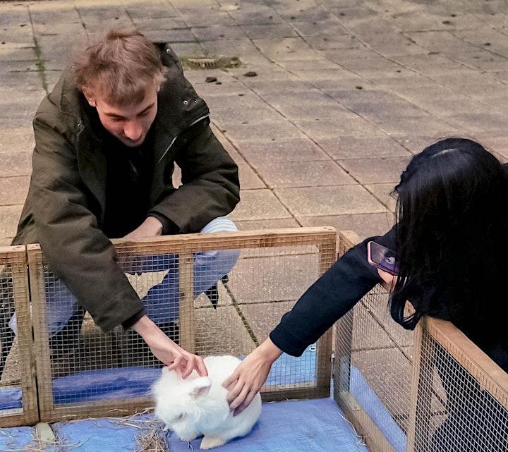 Petting Zoo image