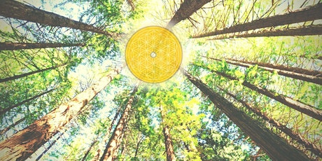 TEMENOS: Summer Solstice Medicine Retreat tickets