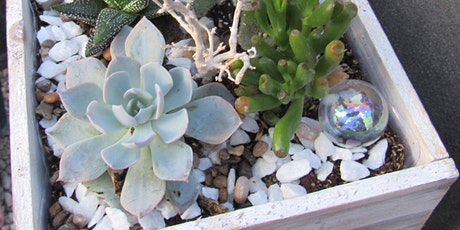 Plant Night at Blue Dyer Distilling Co., (Waldorf), Tuesday, 5/18/2021 at 6 tickets