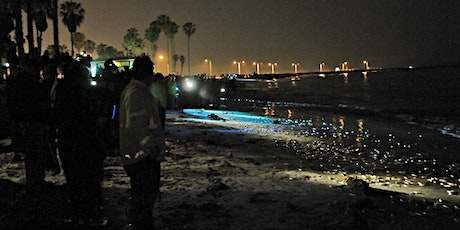 Members-Only Grunion Run tickets