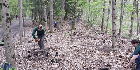 FLT Connect: Trail Stewardship Discussion with NYS Parks' Josh Teeter tickets