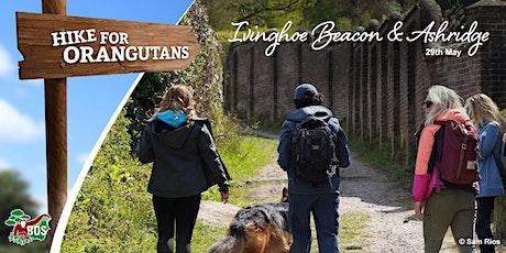 Ivinghoe Beacon and Ashridge Woodland Hike tickets