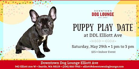 Puppy Play Date Meetup at DDL Elliott tickets