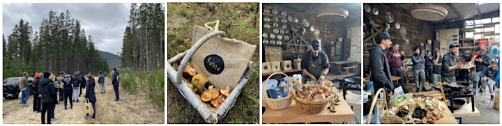 Fable Forage and Feast Tour –Sunday 16 May at 9am image