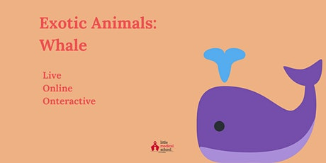 Exotic Animals: Whale Class tickets
