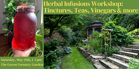 Herbal Infusions Workshop: Tinctures, Teas, Vinegars & more tickets
