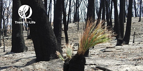 Bushcare After Fire tickets