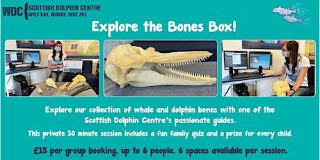 WDC Scottish Dolphin Centre - Private 'Explore the Bones Box' Activity tickets