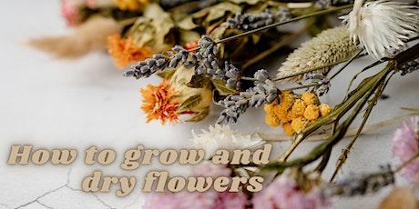 Dried Flowers workshop tickets