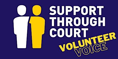 STC Volunteer Voice Day tickets