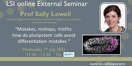 LSI online External Seminar presents Prof Sally Lowell tickets