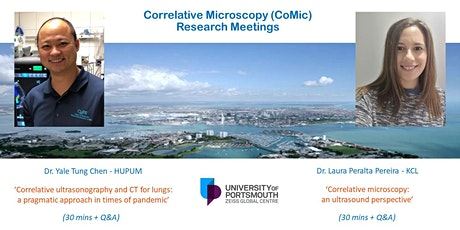 Correlative Microscopy (CoMic) Research Meeting - Ultrasound for healthcare entradas