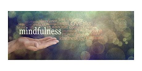 Mindfulness y Terapia de Bosque entradas