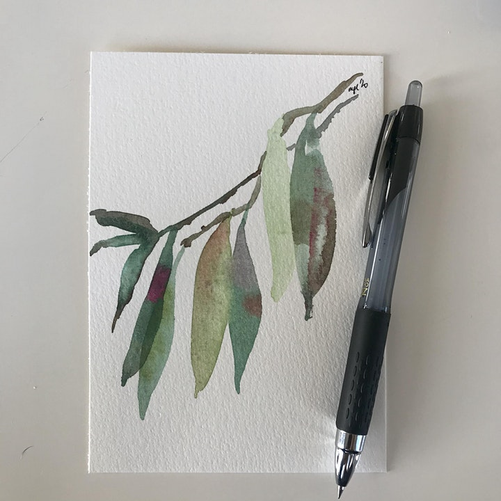 Watercolour Workshop image