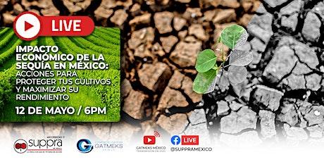 Impacto económico de sequía en México: Acciones para proteger y maximizar. entradas