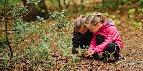 Wild Play 27 July -  Sensory exploration at Ecclesall Woods tickets