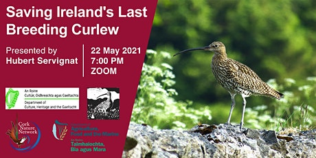Saving Ireland's last breeding Curlew tickets